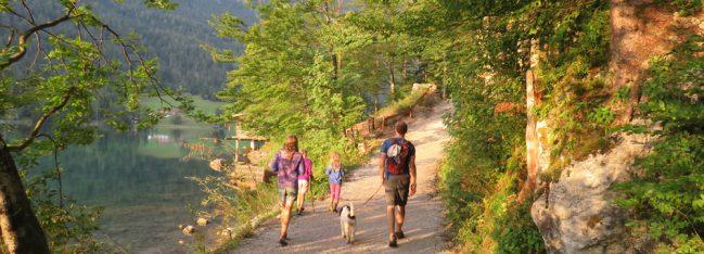 Hiking in Austria