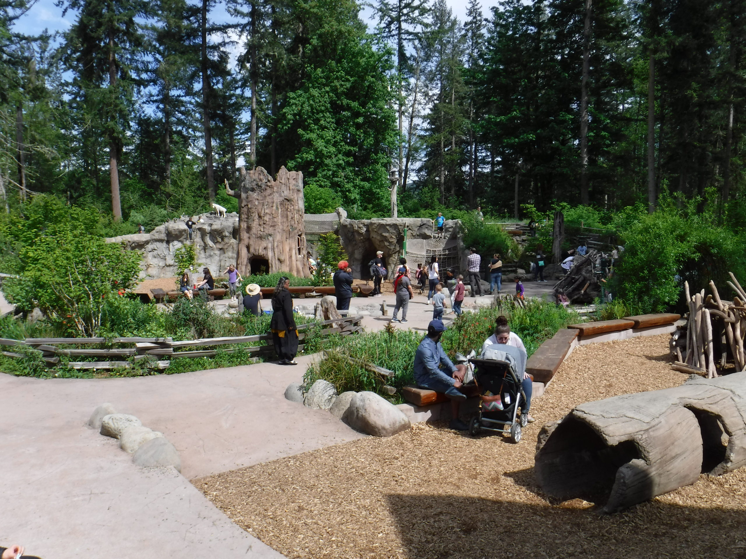 Northwest Trek Wildlife Park