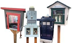 A Little Bit of Magic: Discovering local Little Free Libraries Just in Time for Summer Reading